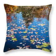 Autumn Reflections Throw Pillow by Bill Wakeley