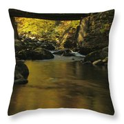 Autumn Reflections In Tennessee Throw Pillow