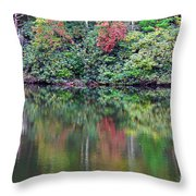 Autumn Reflections Throw Pillow