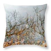 Autumn Reflections On Alloway Lake Nj Throw Pillow