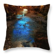 Autumn Reflections On The Tributary Throw Pillow