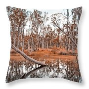 Autumn Reflections V2 Throw Pillow