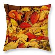 Autumn Remains 2 Throw Pillow