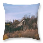 Autumn Remains In January Throw Pillow