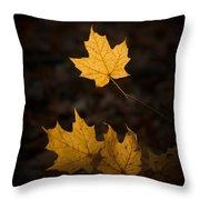 Autumn Remnant Throw Pillow