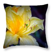 Autumn Respite Throw Pillow