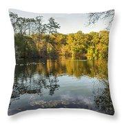 Autumn Retreat Throw Pillow