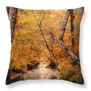 Autumn Riches 1 Throw Pillow