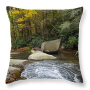 Autumn River Fall Throw Pillow
