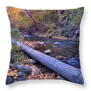 Genil River Throw Pillow
