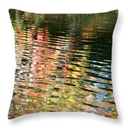 Autumn River Water Reflections  Throw Pillow