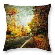 Autumn Road Connecticut Usa Throw Pillow