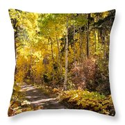 Autumn Road - Tipton Canyon - Casper Mountain - Casper Wyoming Throw Pillow