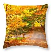 Autumn Road Home Throw Pillow by Terri Gostola