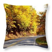 Autumn Road Throw Pillow by Mary Koval
