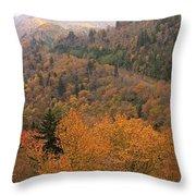 Autumn Roads Throw Pillow