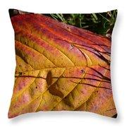 Autumn Saga Throw Pillow