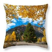 Autumn Scene Framed By Aspen Throw Pillow