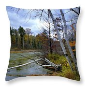 Autumn Scene Of Along The Shore Of The Platte River In Michigan Throw Pillow