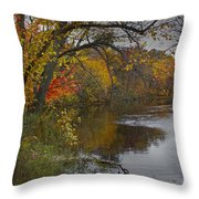 Autumn Scene Of The Flat River Throw Pillow