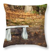 Autumn Seat Throw Pillow
