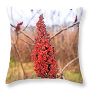 Autumn Seed Pod Throw Pillow