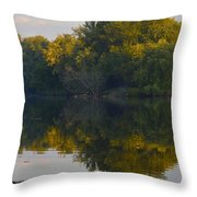Autumn Shell Rock Panel 2 Throw Pillow