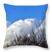 Autumn Sky 2 Throw Pillow