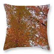 Autumn Sky Through Trees Throw Pillow