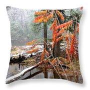 Autumn Snow Cranberry River Throw Pillow