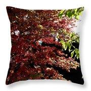 Autumn Snowball Bush Throw Pillow