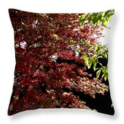 Autumn Snowball Bush Throw Pillow