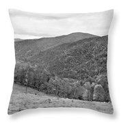 Autumn Song Monochrome Throw Pillow