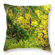 Autumn Splendor 14  Throw Pillow