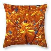 Autumn Splendor 15 Throw Pillow