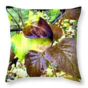 Autumn Splendor 4 Throw Pillow