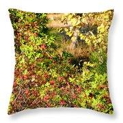 Autumn Splendor 7 Throw Pillow