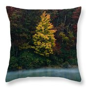 Autumn Splendor Throw Pillow by Shane Holsclaw