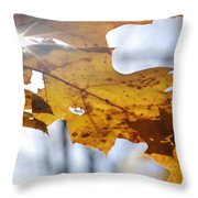 Autumn Star Throw Pillow