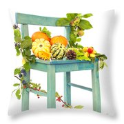 Autumn Still Life Chair Throw Pillow