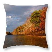 Autumn Storm Approaching Throw Pillow