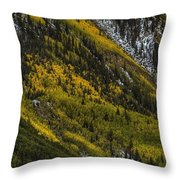 Autumn Streaks Throw Pillow