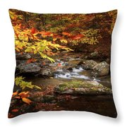 Autumn Stream Square Throw Pillow