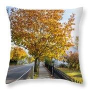 Autumn Stroll In Mystic Throw Pillow