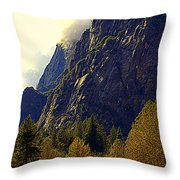 Autumn Sun Glow Throw Pillow