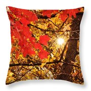 Autumn Sunrise Painterly Throw Pillow