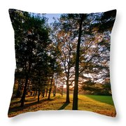 Autumn Sunset Throw Pillow