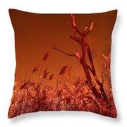 Autumn Surprise  Throw Pillow by Thomas  MacPherson Jr
