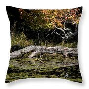 Autumn Swamp Throw Pillow