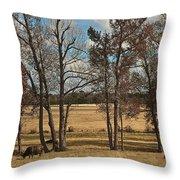 Autumn Texas Pasture Throw Pillow